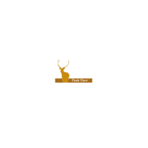 Dark Deer logo